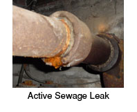sewage leak in queens home